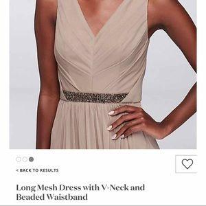 David's Bridal Long Mesh Dress with V neck